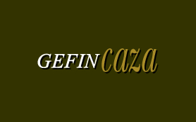 <strong>Gefincaza</strong> website