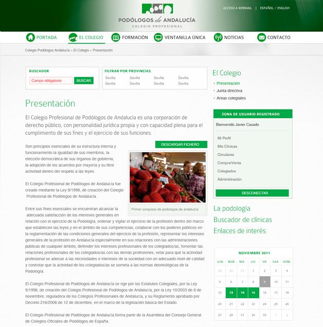 Portal Colegio De Podologos Proyectos Zuinq Studio Web